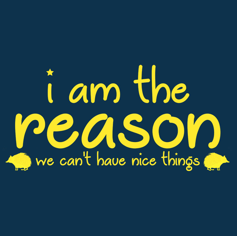 I am the reason