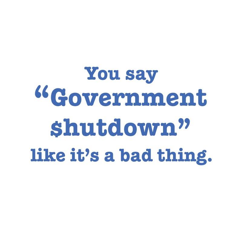 YOU SAY GOVERNMENT SHUTDOWN1